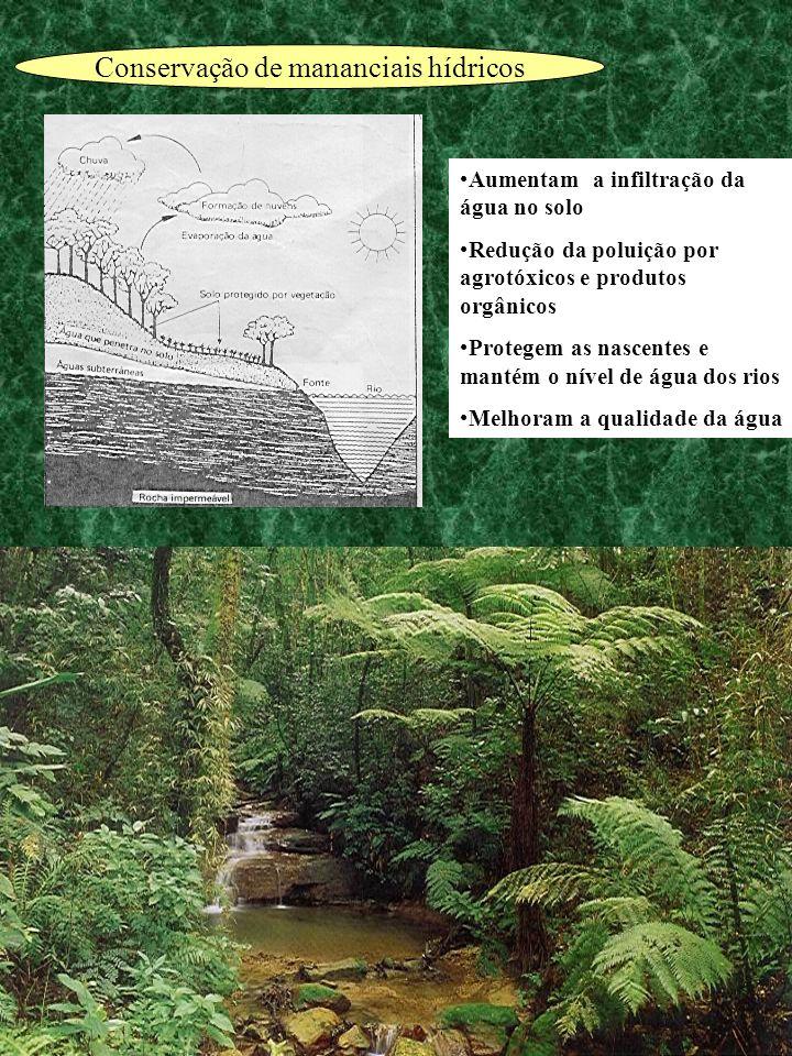 Conservação de mananciais hídricos