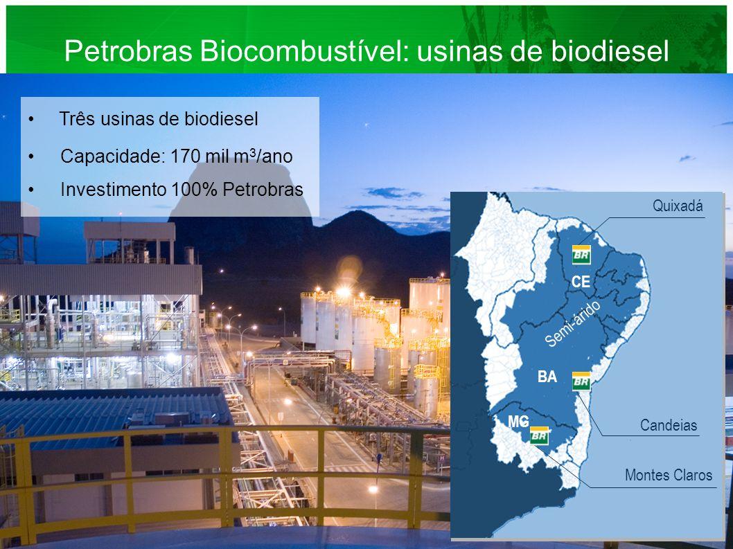 Petrobras Biocombustível: usinas de biodiesel