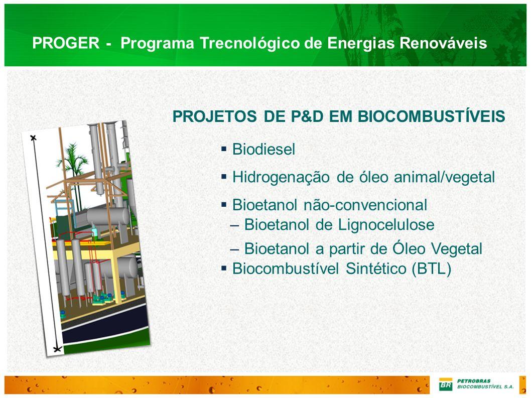 PROGER - Programa Trecnológico de Energias Renováveis