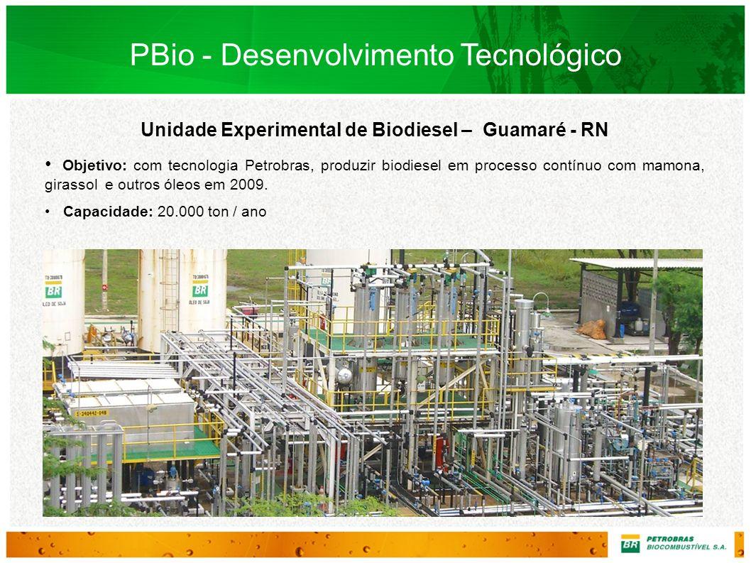 Unidade Experimental de Biodiesel – Guamaré - RN