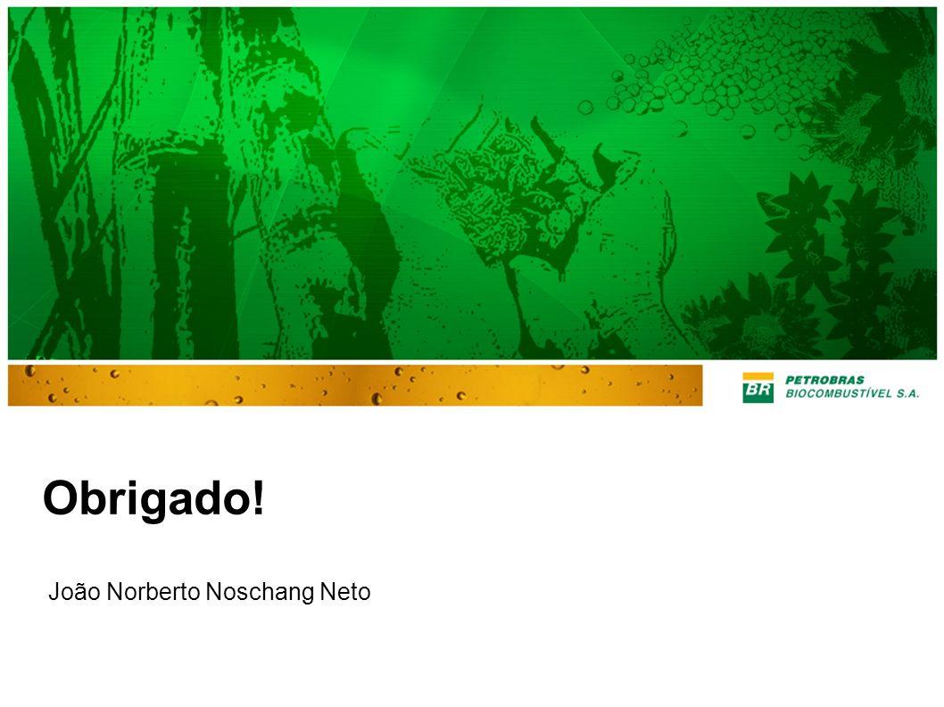 Obrigado! João Norberto Noschang Neto