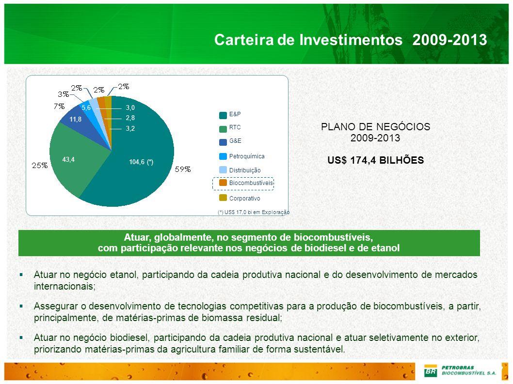 Carteira de Investimentos 2009-2013