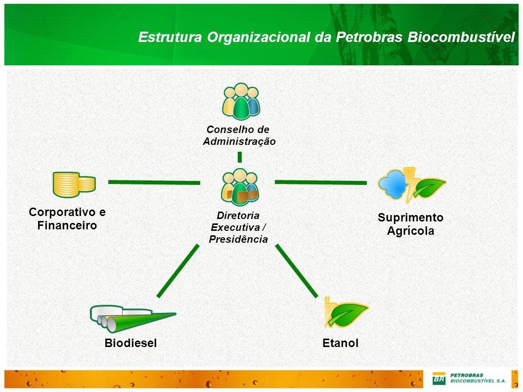 Estrutura Organizacional da Petrobras Biocombustível