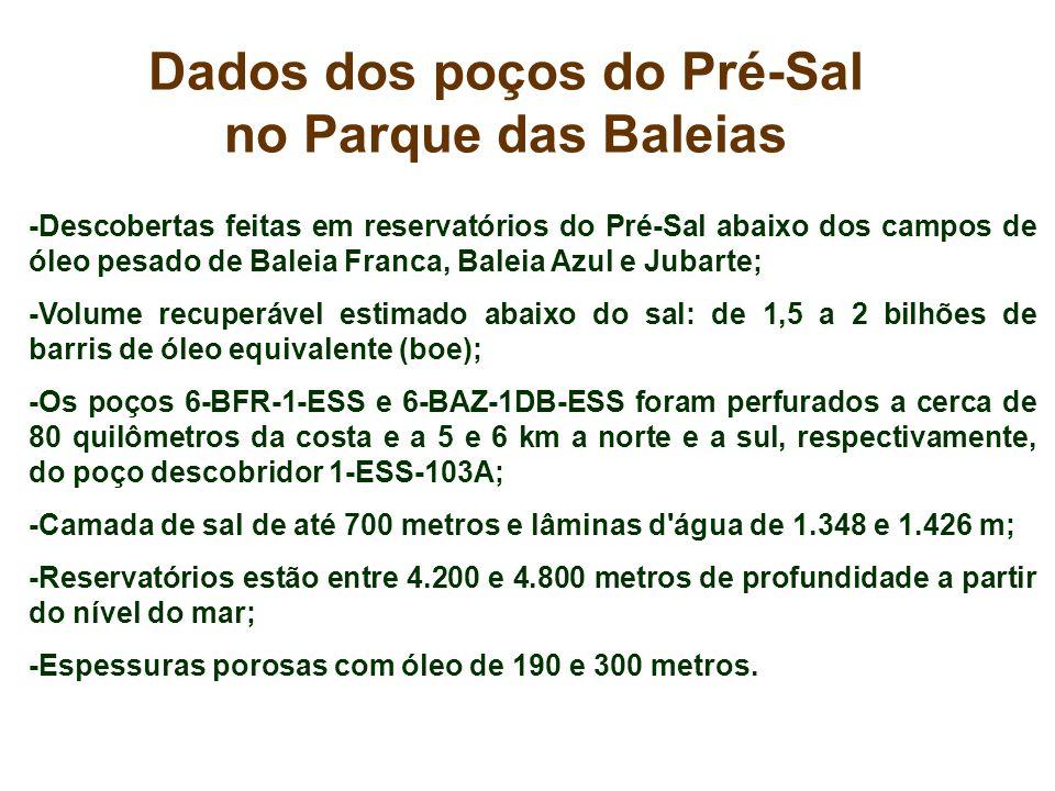 Dados dos poços do Pré-Sal
