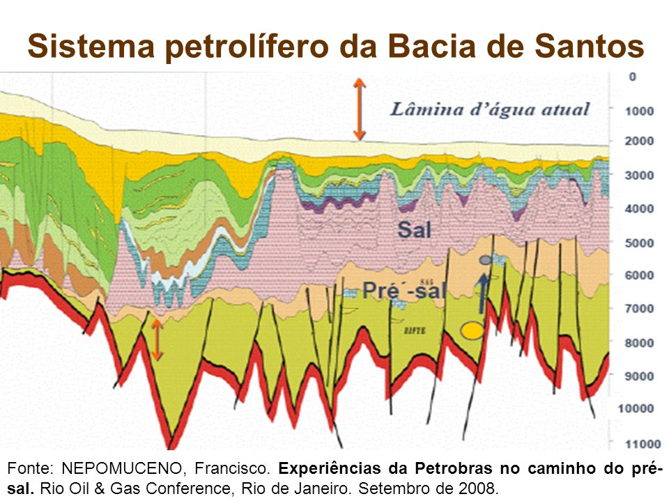 Sistema petrolífero da Bacia de Santos
