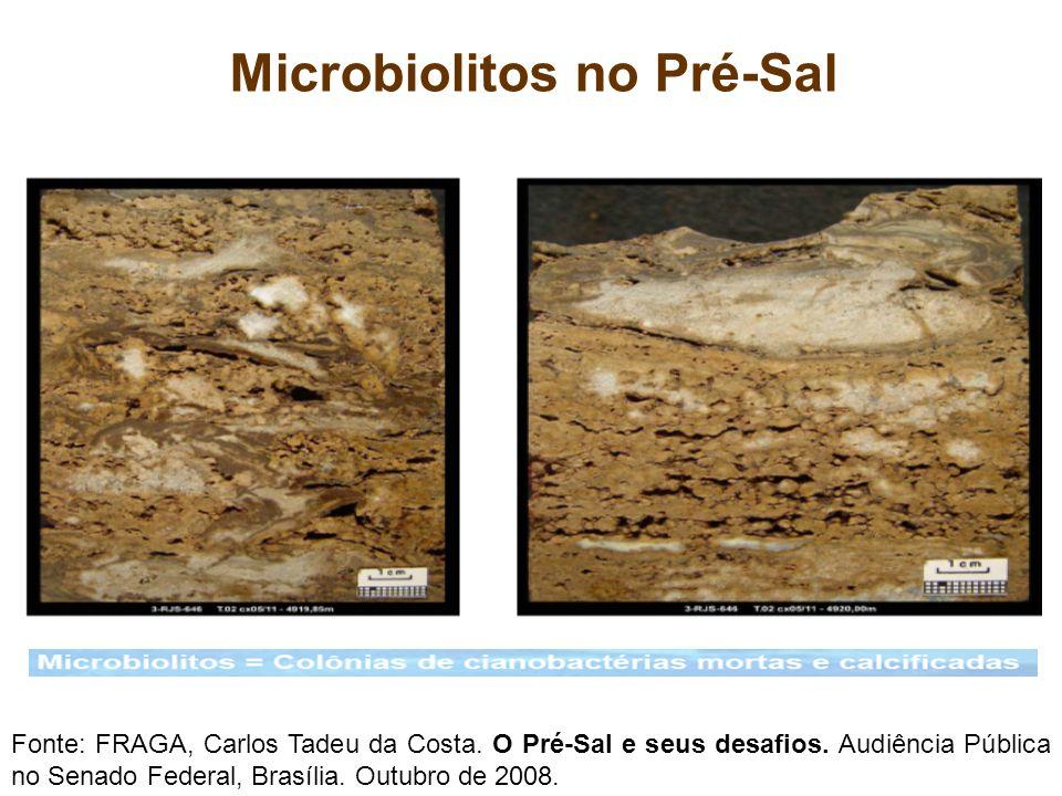 Microbiolitos no Pré-Sal