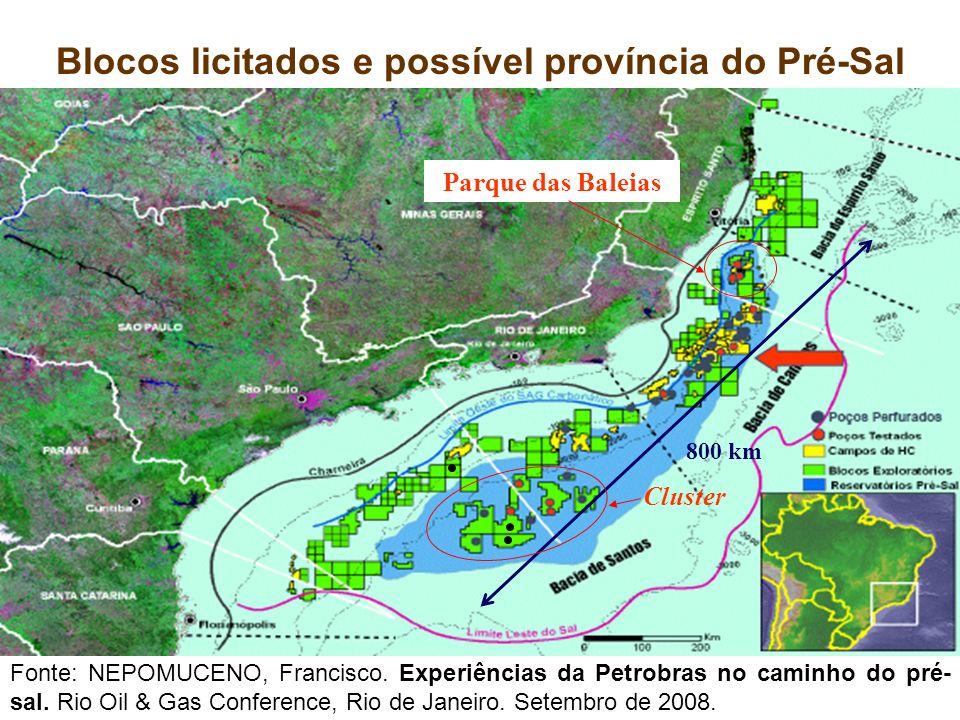 Blocos licitados e possível província do Pré-Sal