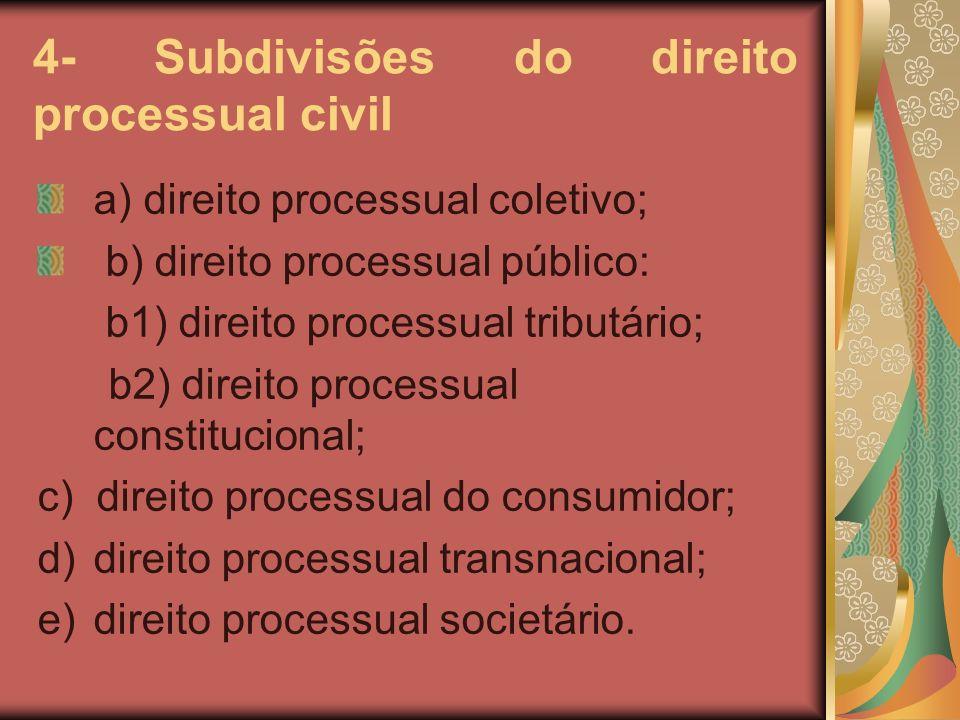 4- Subdivisões do direito processual civil