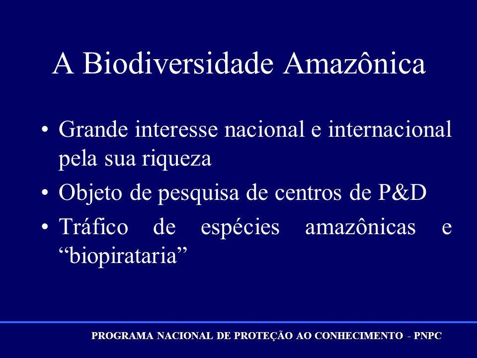 A Biodiversidade Amazônica
