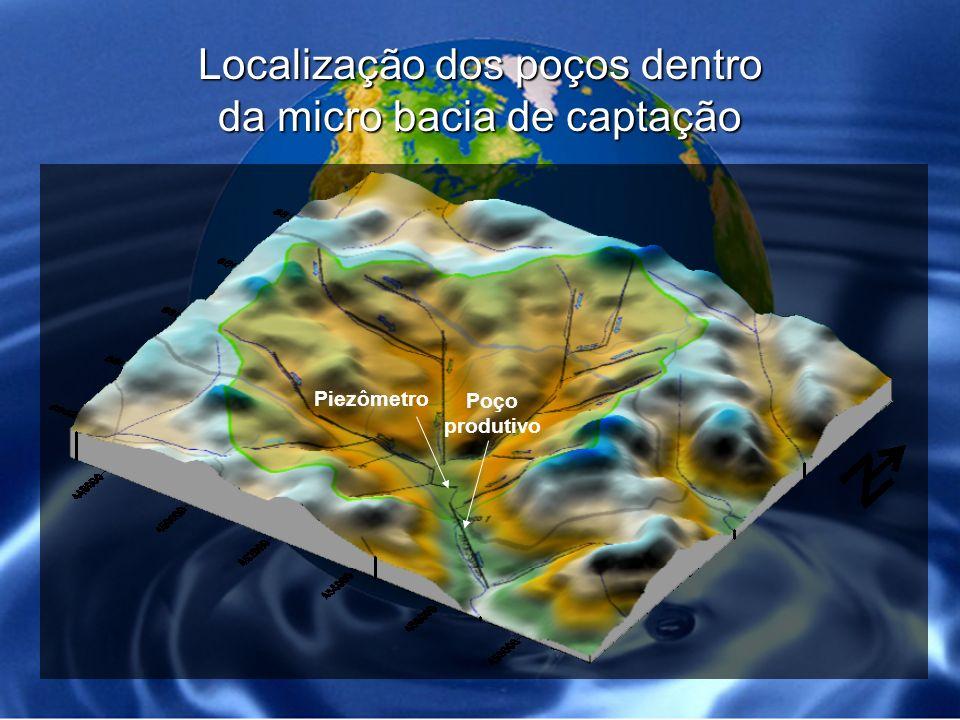 Localização dos poços dentro da micro bacia de captação