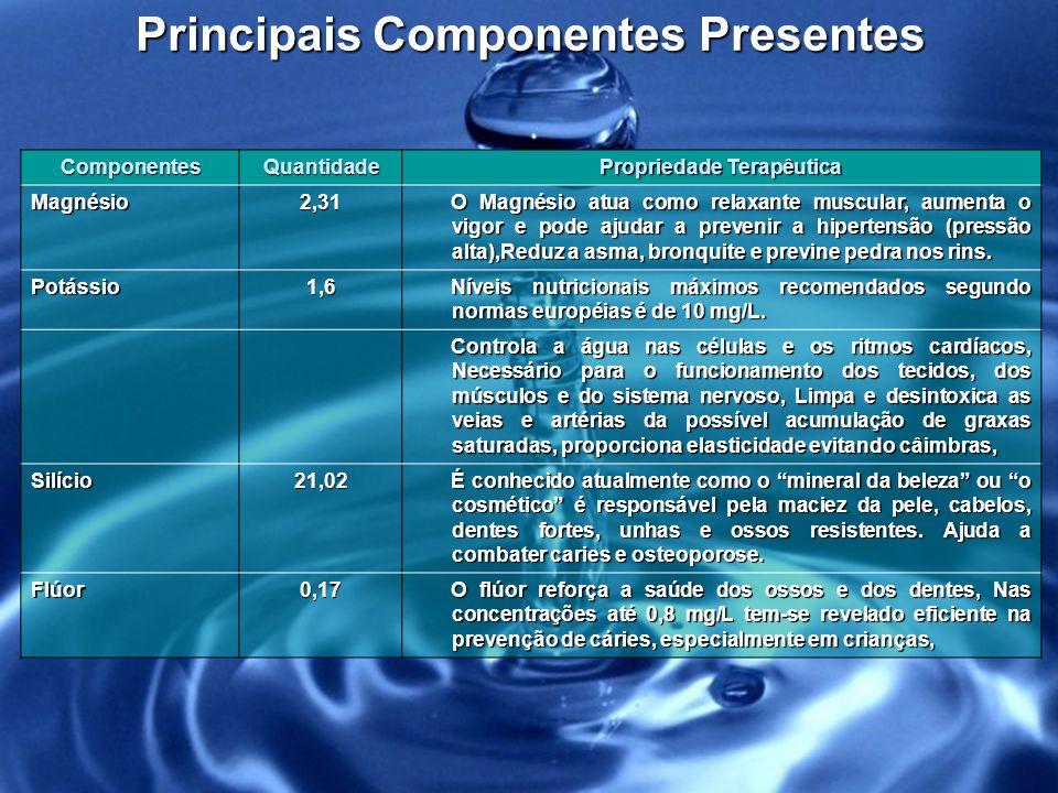 Principais Componentes Presentes