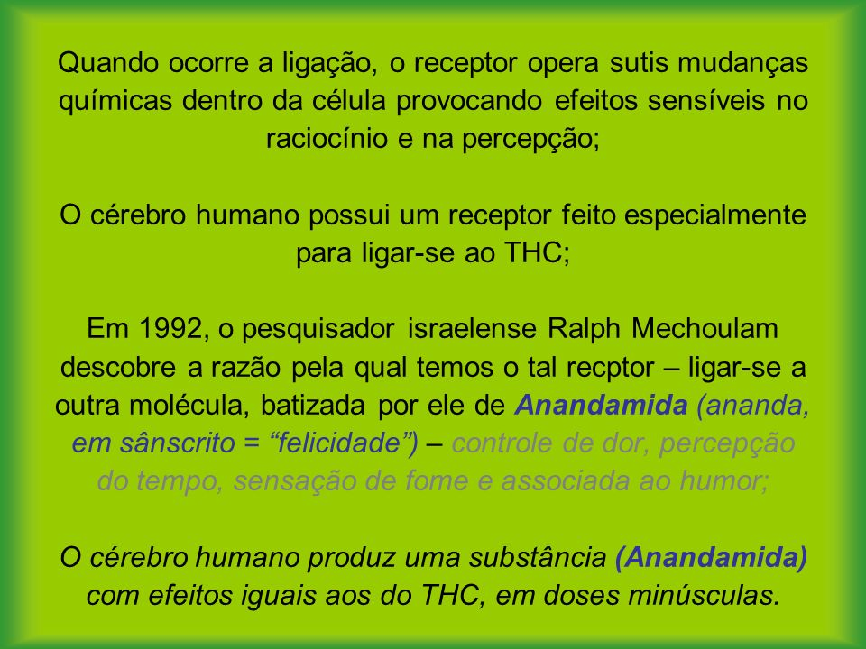 Quando ocorre a ligação, o receptor opera sutis mudanças químicas dentro da célula provocando efeitos sensíveis no raciocínio e na percepção; O cérebro humano possui um receptor feito especialmente para ligar-se ao THC; Em 1992, o pesquisador israelense Ralph Mechoulam descobre a razão pela qual temos o tal recptor – ligar-se a outra molécula, batizada por ele de Anandamida (ananda, em sânscrito = felicidade ) – controle de dor, percepção do tempo, sensação de fome e associada ao humor; O cérebro humano produz uma substância (Anandamida) com efeitos iguais aos do THC, em doses minúsculas.