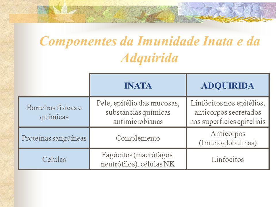 Componentes da Imunidade Inata e da Adquirida