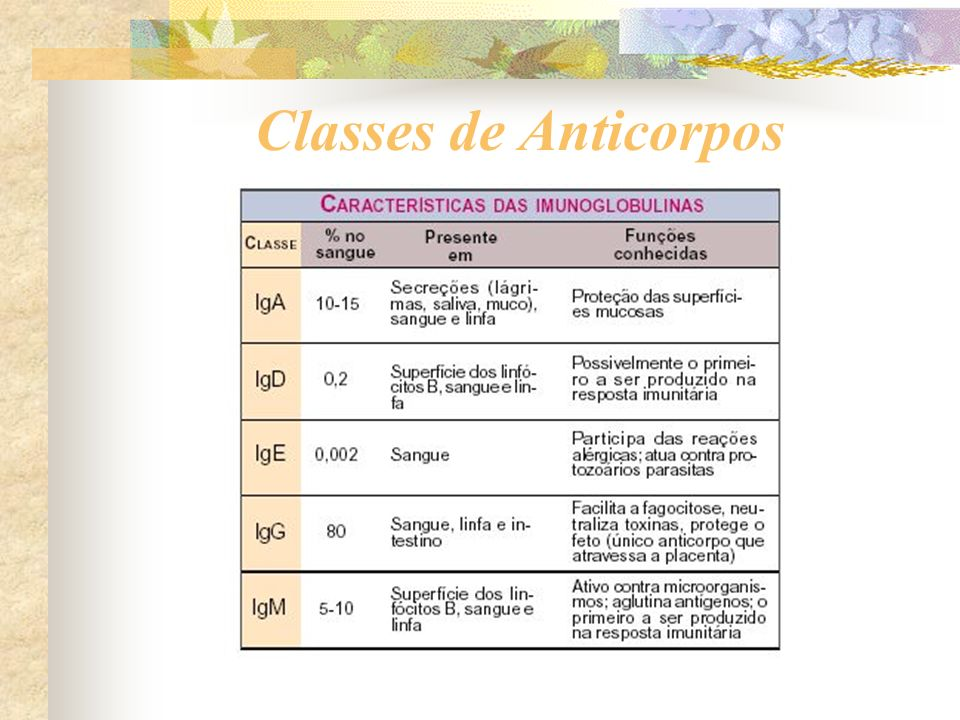 Classes de Anticorpos