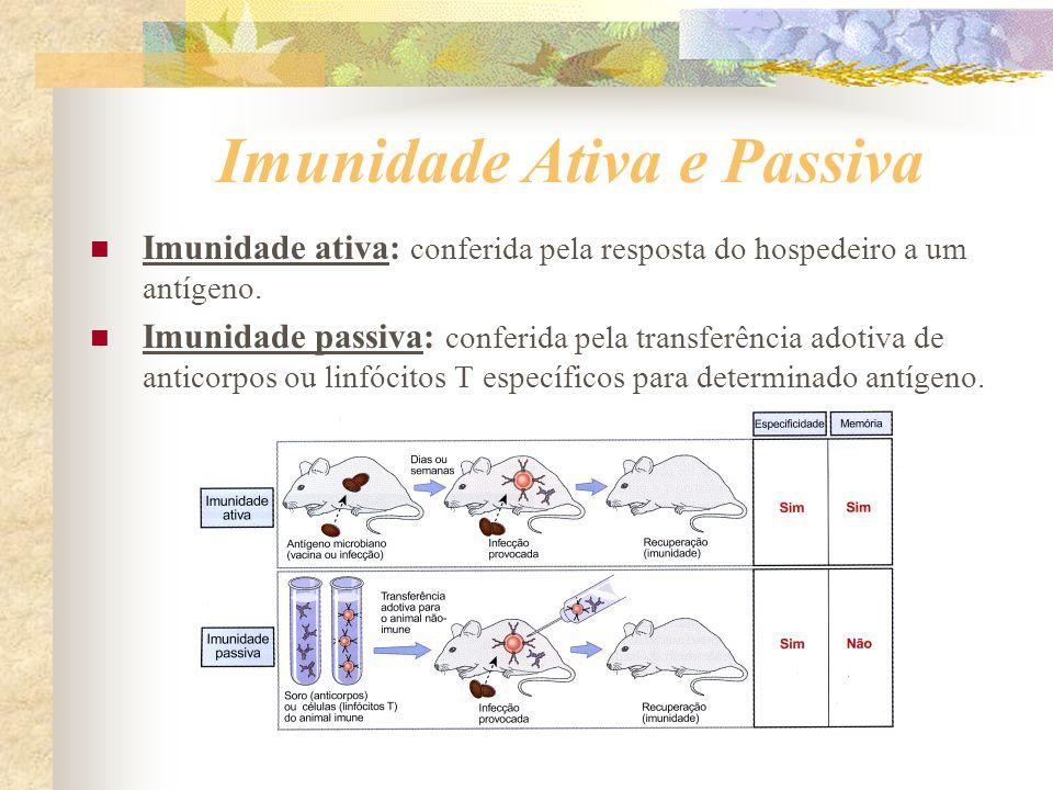 Imunidade Ativa e Passiva