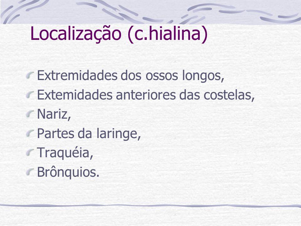 Localização (c.hialina)