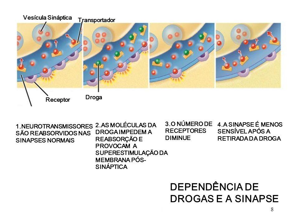 DEPENDÊNCIA DE DROGAS E A SINAPSE