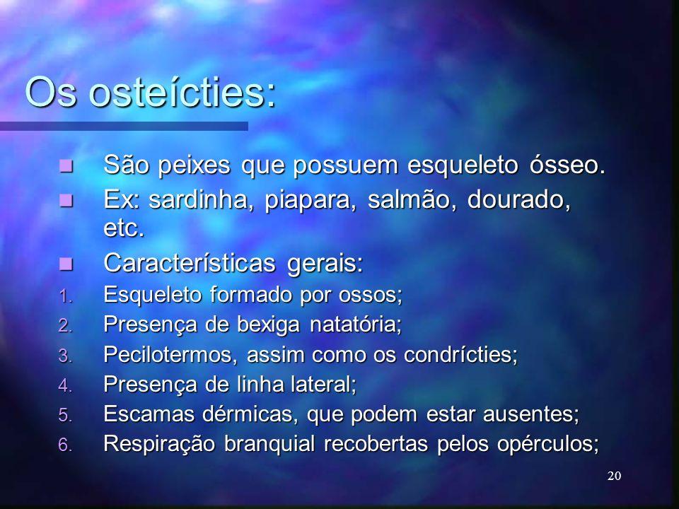 Os osteícties: São peixes que possuem esqueleto ósseo.