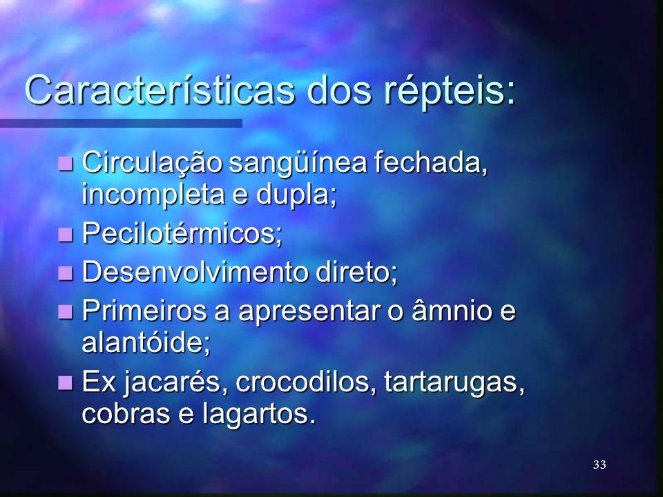Características dos répteis:
