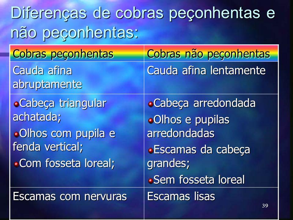 Diferenças de cobras peçonhentas e não peçonhentas: