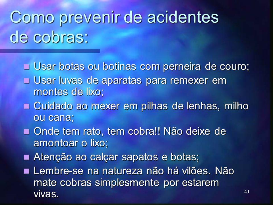 Como prevenir de acidentes de cobras: