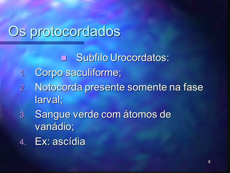 Os protocordados Subfilo Urocordatos: Corpo saculiforme;