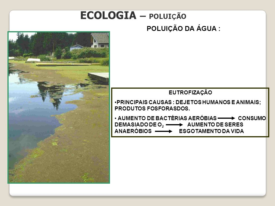 ECOLOGIA – POLUIÇÃO POLUIÇÃO DA ÁGUA : EUTROFIZAÇÃO