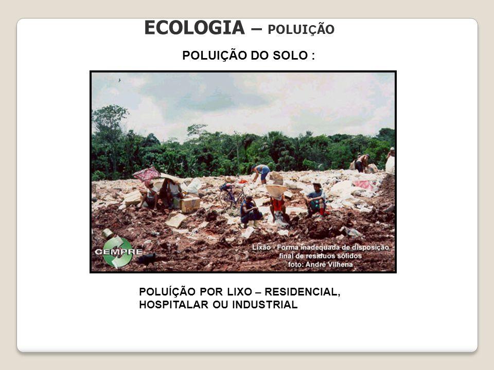 ECOLOGIA – POLUIÇÃO POLUIÇÃO DO SOLO :