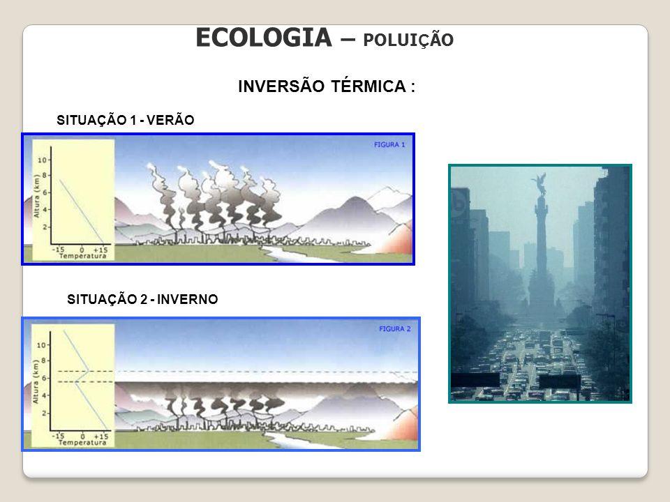 ECOLOGIA – POLUIÇÃO INVERSÃO TÉRMICA : SITUAÇÃO 1 - VERÃO