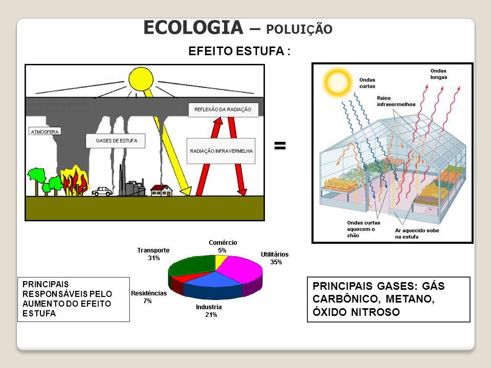 = ECOLOGIA – POLUIÇÃO EFEITO ESTUFA :