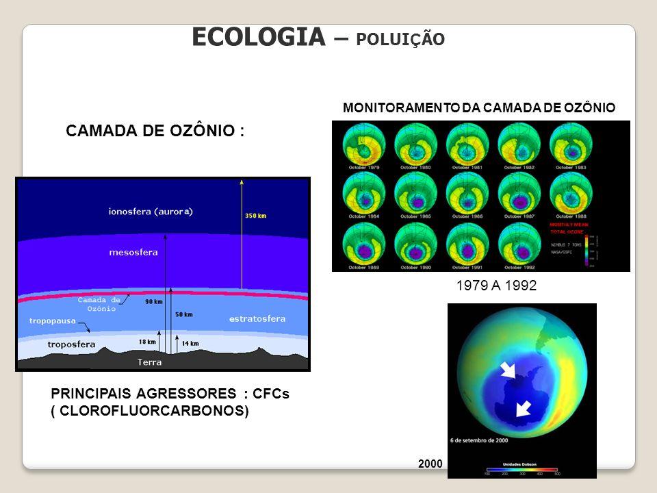 ECOLOGIA – POLUIÇÃO CAMADA DE OZÔNIO : 1979 A 1992