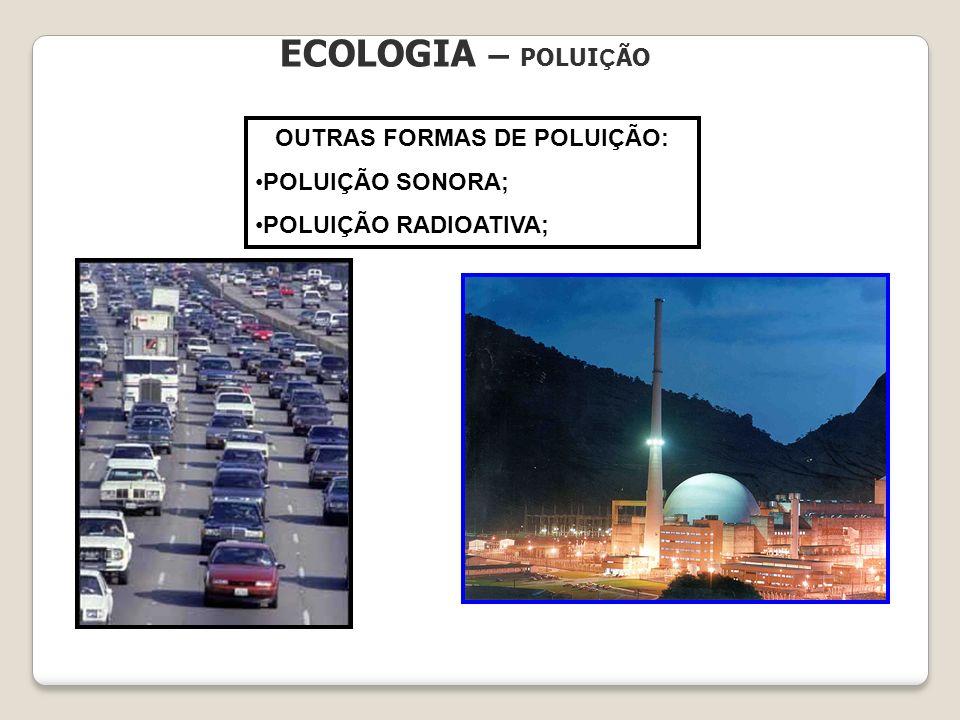 OUTRAS FORMAS DE POLUIÇÃO: