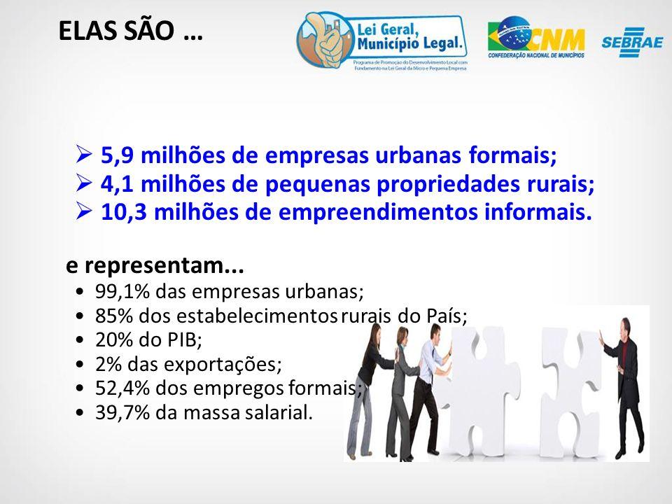ELAS SÃO … 5,9 milhões de empresas urbanas formais;