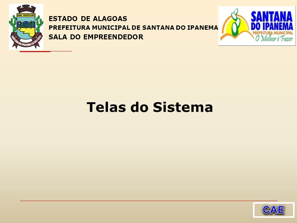Telas do Sistema CAE ESTADO DE ALAGOAS SALA DO EMPREENDEDOR 1010