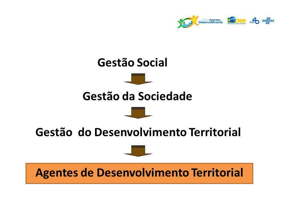 Gestão Social Gestão da Sociedade. Gestão do Desenvolvimento Territorial.