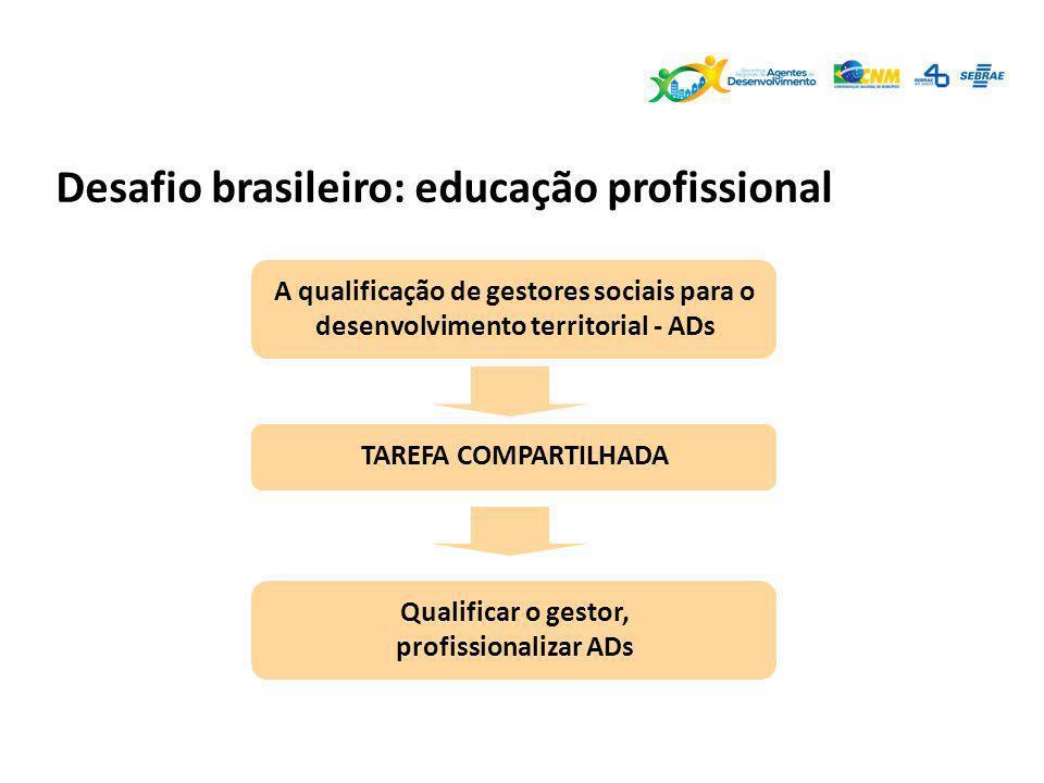 Desafio brasileiro: educação profissional