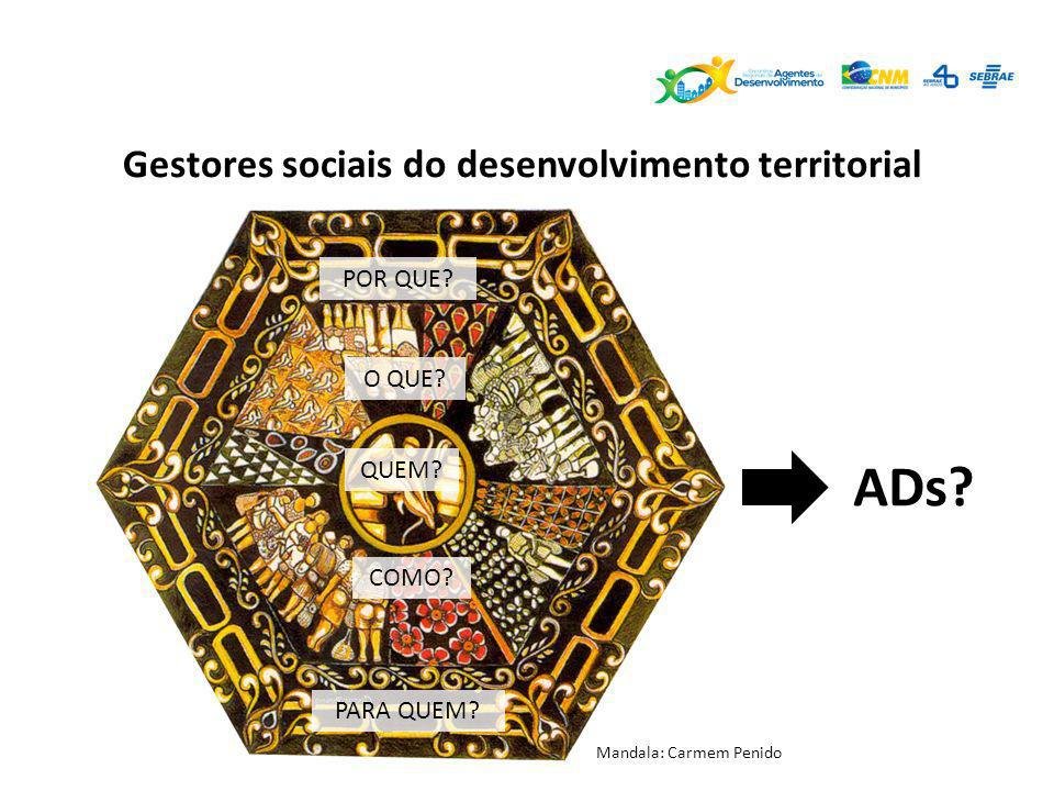 ADs Gestores sociais do desenvolvimento territorial POR QUE O QUE