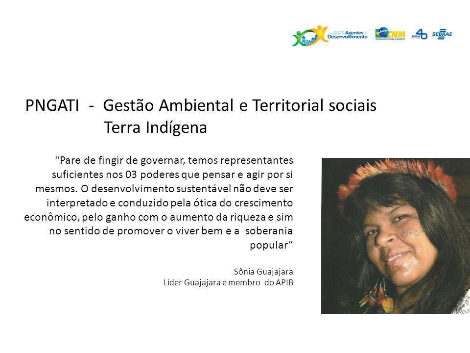 PNGATI - Gestão Ambiental e Territorial sociais Terra Indígena