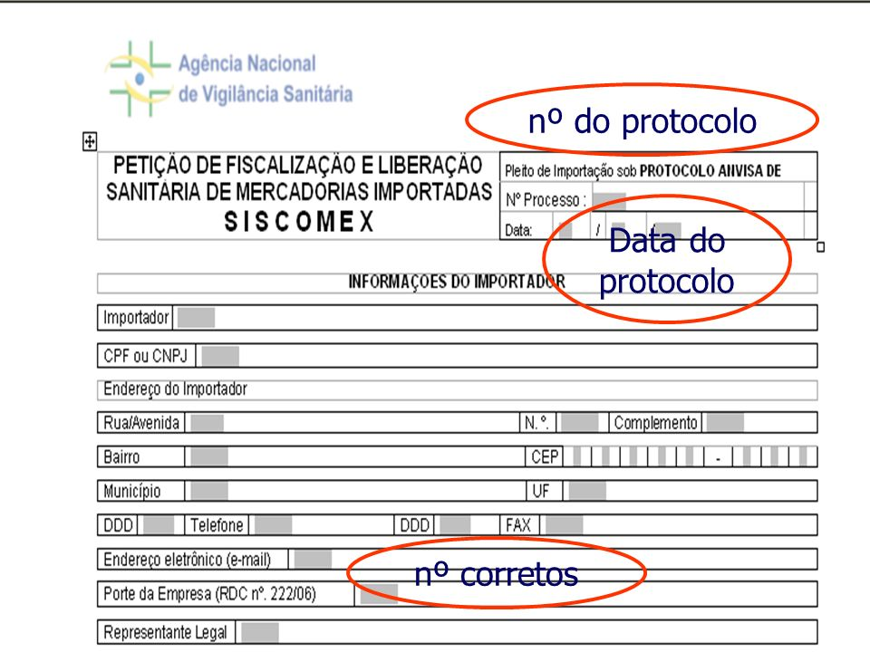 nº do protocolo Data do protocolo nº corretos 11
