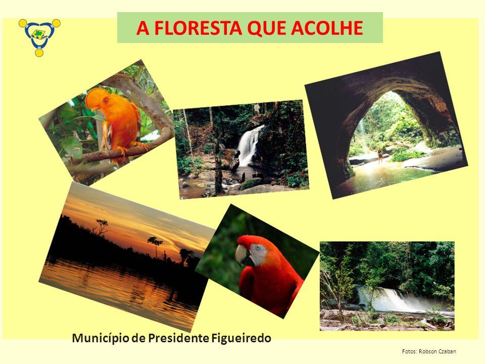 A FLORESTA QUE ACOLHE Município de Presidente Figueiredo