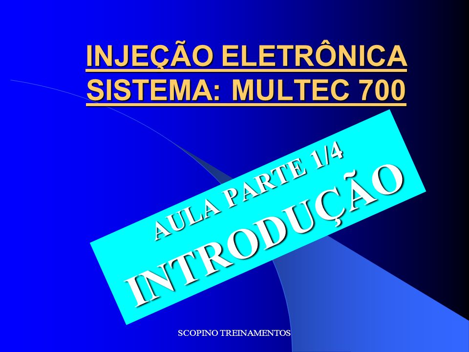 INJEÇÃO ELETRÔNICA SISTEMA: MULTEC 700