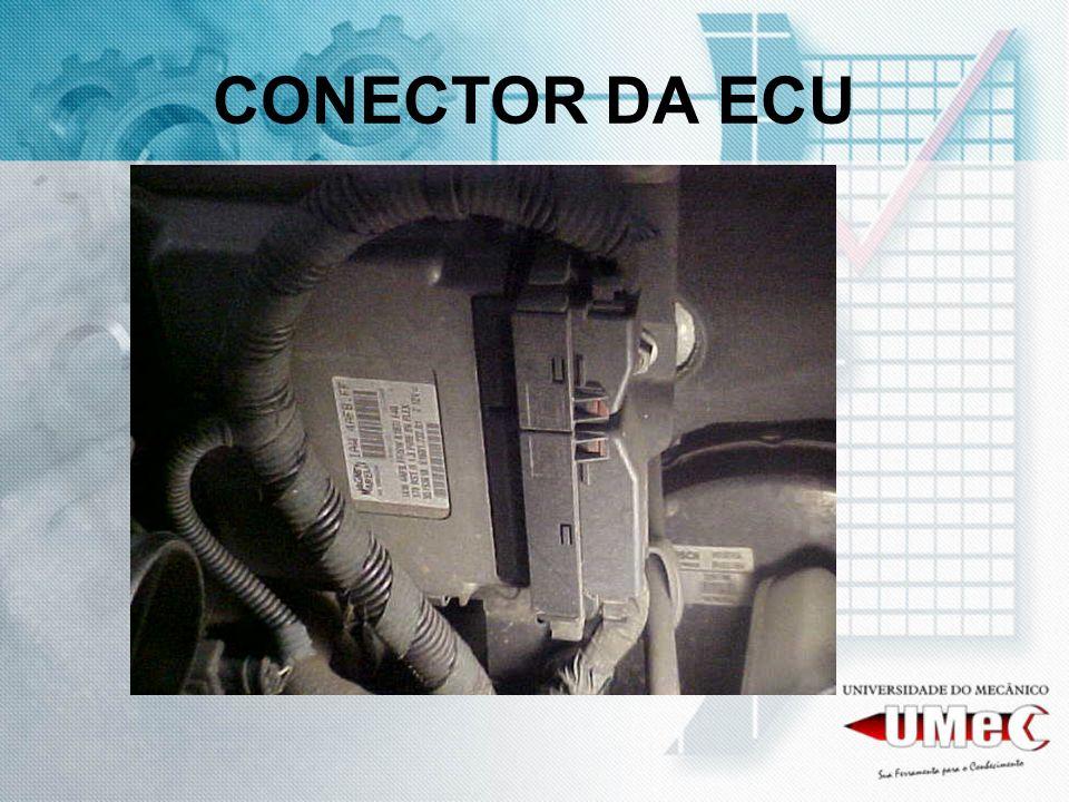 CONECTOR DA ECU