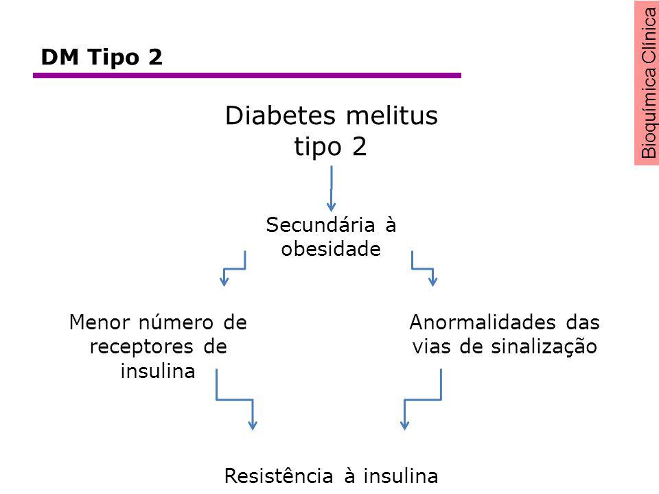 Diabetes melitus tipo 2 DM Tipo 2 Secundária à obesidade