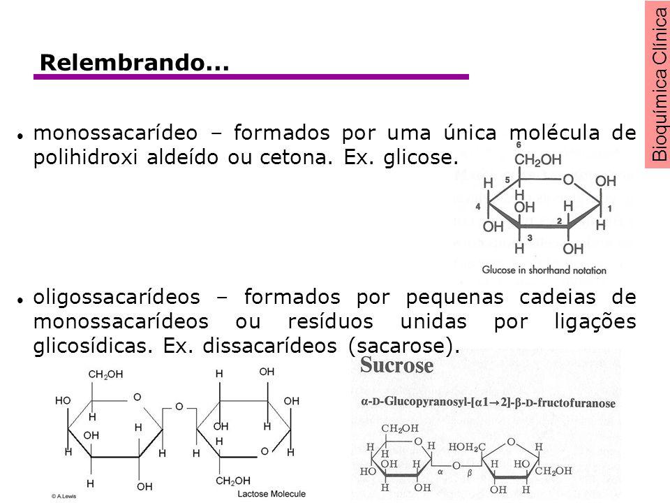 Relembrando... monossacarídeo – formados por uma única molécula de polihidroxi aldeído ou cetona. Ex. glicose.