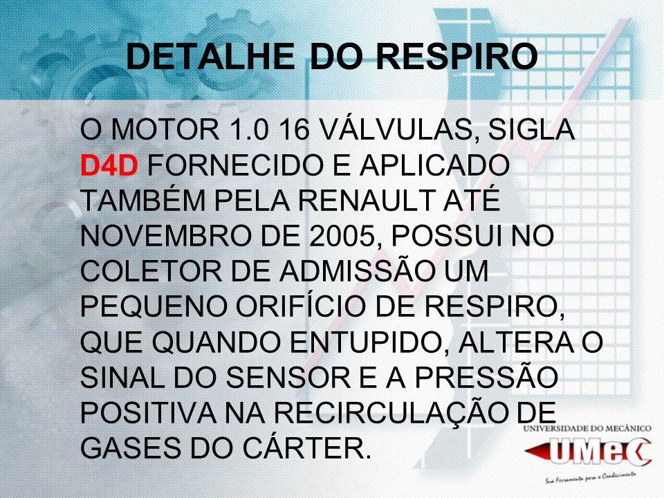 DETALHE DO RESPIRO