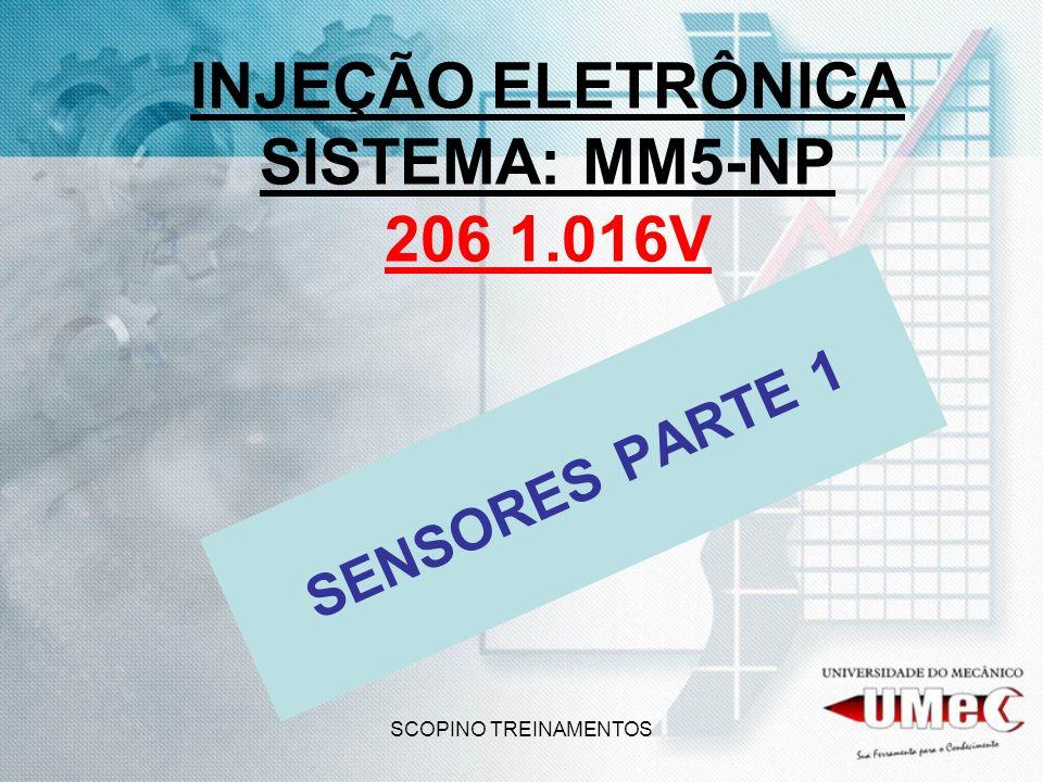 INJEÇÃO ELETRÔNICA SISTEMA: MM5-NP 206 1.016V