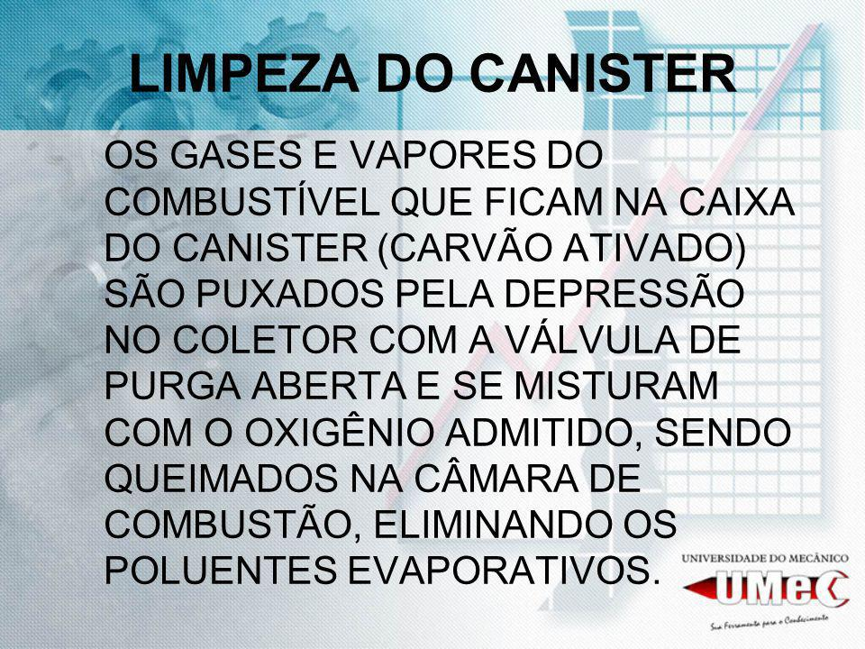 LIMPEZA DO CANISTER