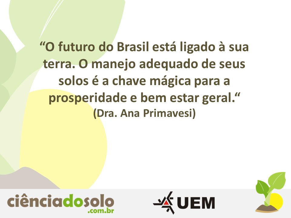 O futuro do Brasil está ligado à sua terra