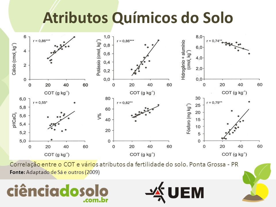 Atributos Químicos do Solo