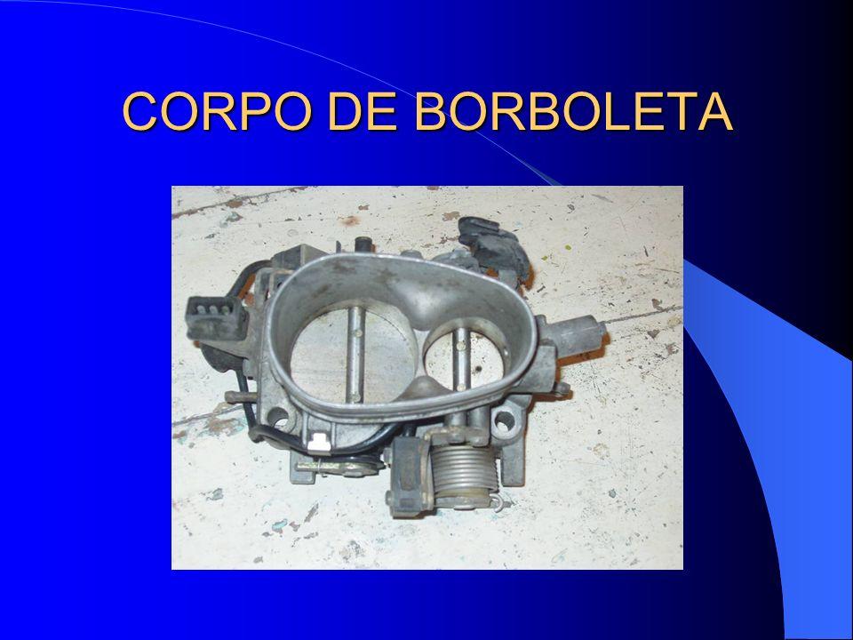 CORPO DE BORBOLETA